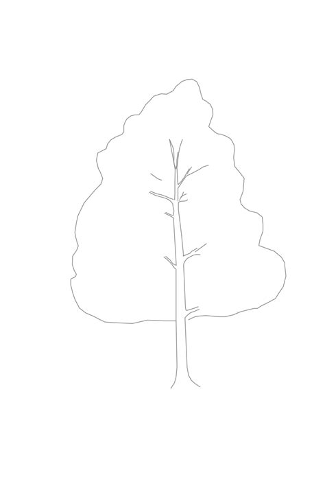 Tree Outline With Leaves by Branching Out Learn How To Draw A Realistic Tree