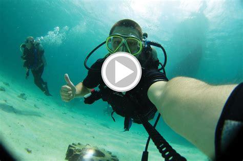 dive app 5 best dive apps scuba diver