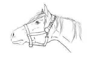 horse head lineart by tnienjaa on deviantart