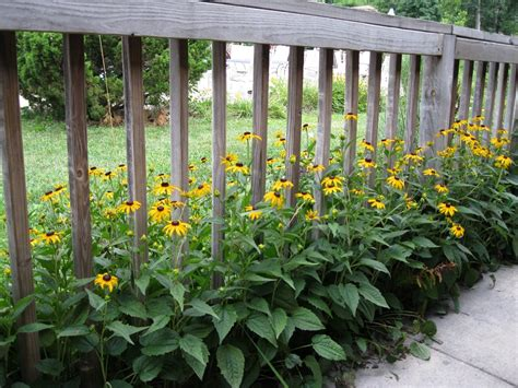 Garden Border Fence Ideas Garden Border Fence Ideas Radionigerialagos