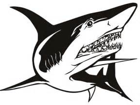 Shark Bathroom Decor » New Home Design
