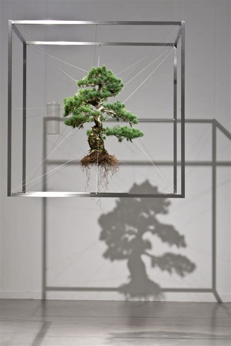 frozen suspended bonsai tree sculptures