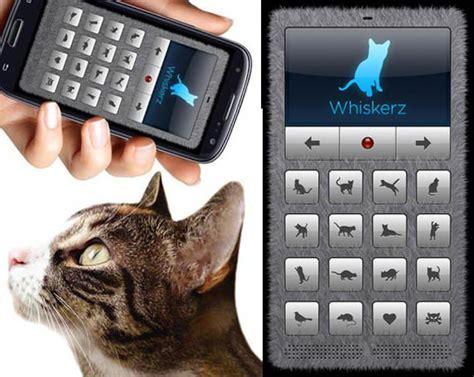 human to translator cat translator aplikasi untuk bercakap dengan kucing anda cisdel