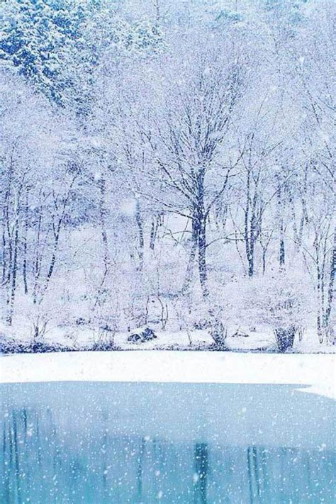 christmassnow pictures for iphones beautiful winter scenery iphone 4 wallpapers free 640x960 hd iphone retina wallpapers