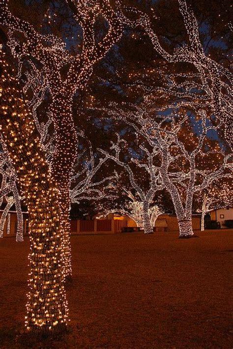 lights in johnson city outdoor