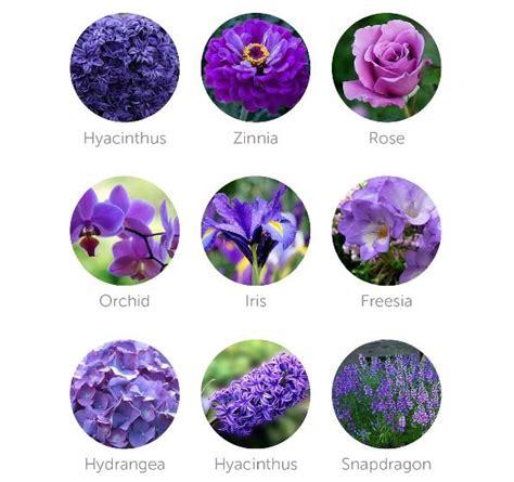 fiori bouquet sposa settembre bouquet sposa autunno i fiori da scegliere mese per mese