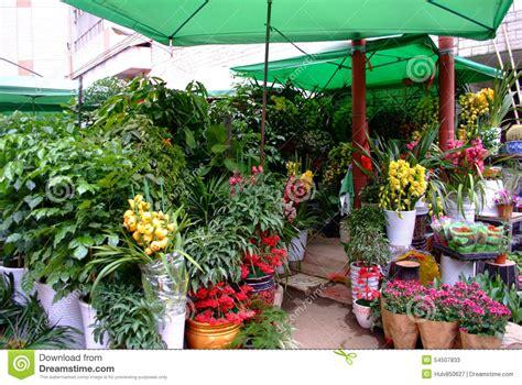 Local Florist Shops by Florists Shop Flower Shop Stock Photo Image 54507833