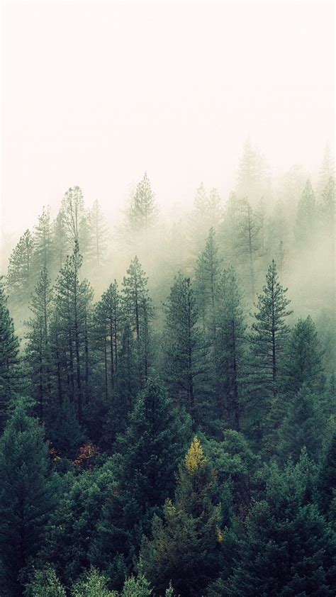 wallpaper photography pinterest back to nature iphone wallpaper collection nature