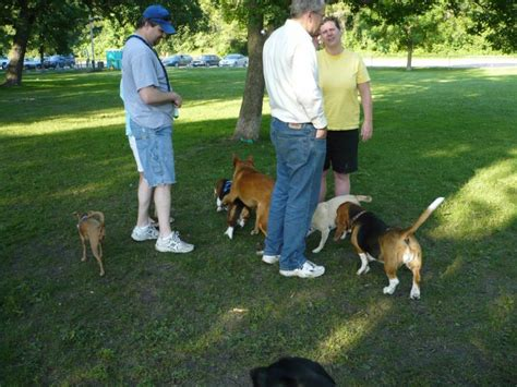 whitney minnesota video dog dog parks with off leash pet exercise areas another