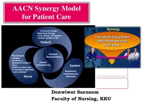 synergy model nursing theory aacn synergy model for patient care