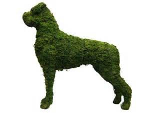 Garden Topiary Frames - boxer dog garden topiary mossed frame