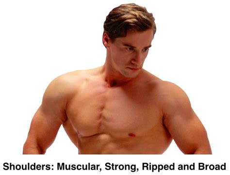 8 Best Shoulder Exercises For Skinny Hardgainers To Pack Mass Chest Shoulder