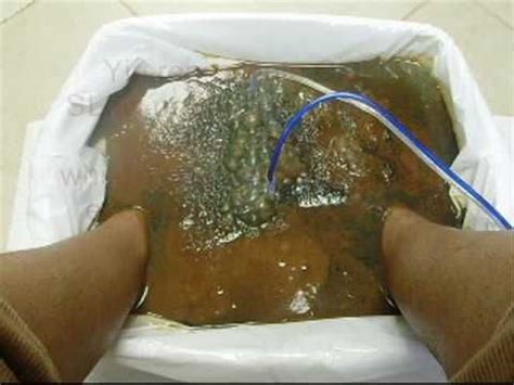 Lyme Disease Foot Detox by 11 Best Images About Ionic Foot Detox On