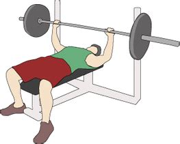 bench press diagram about unit 7 fitness testing and sport