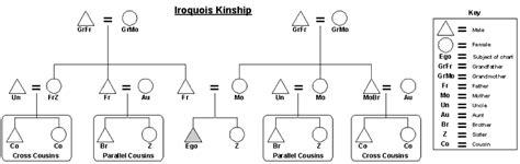 kinship pattern definition iroquois kinship familypedia fandom powered by wikia