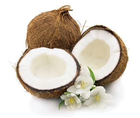 coco vanilla crazy for coconuts mercedes kay gold