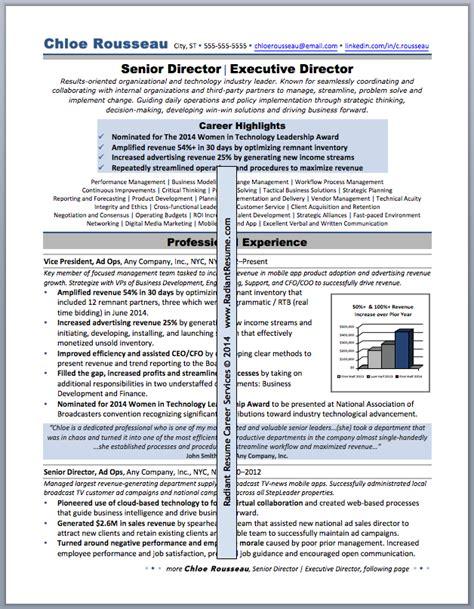 Technology Executive Sle Resume by Resume Sles