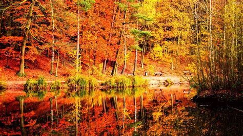 wallpaper 4k autumn autumn reflections in the lake 823707 walldevil