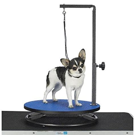 grooming tables for small dogs grooming table the top 4 tables for 2017 reviewed