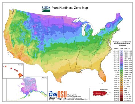 map usda zones how to grow fruit and nut trees in zone 5 7 more