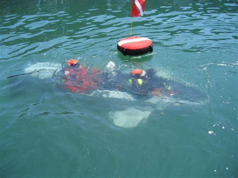 shark at indian point at table rock lake dan robert jp in