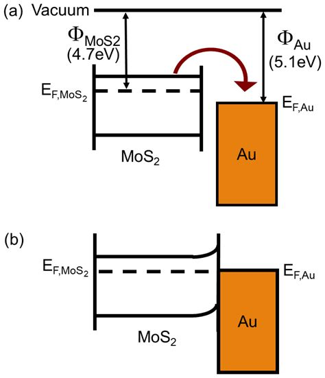 fermi level diagram a the energy band diagram for mos2 and au shows the