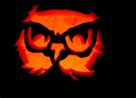 printable owl pumpkin carving patterns pumpkin stencils owl cake ideas and designs