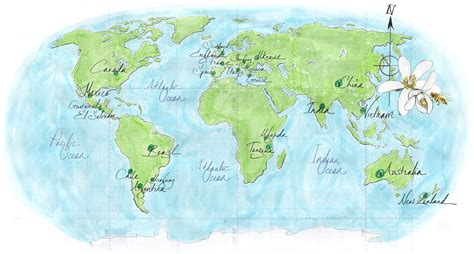 world map images high resolution best photos of high resolution world map high