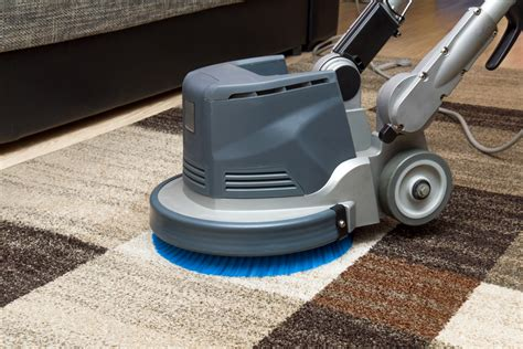 professional upholstery cleaning professional carpet cleaners east london