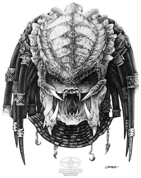 predator head drawing www imgkid com the image kid has it