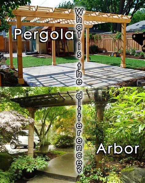 what s the difference between a pergola and an arbor