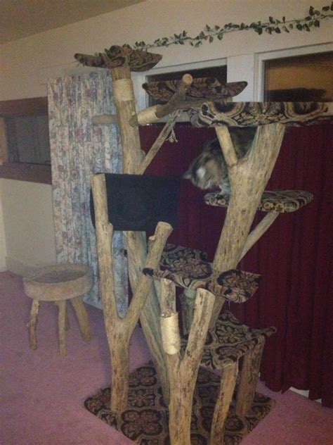 Unique Cat Furniture by A Creative Approach To Building Cat Trees The Best Cat Trees