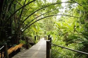 Hawaii Botanical Garden Hawaii Tropical Botanical Garden