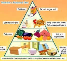 top diet foods balanced diet food chart