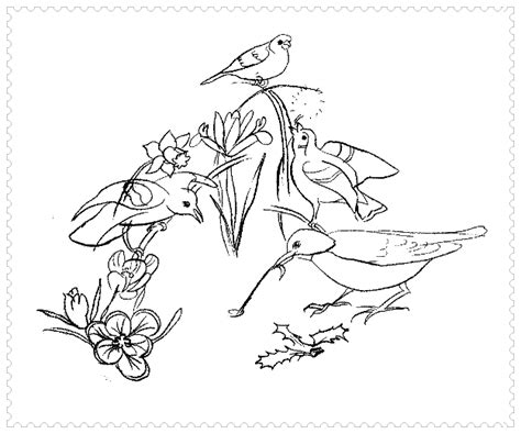printable coloring pages of birds and flowers desenam peisaje primavara planse de colorat