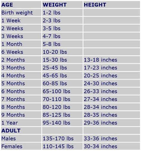 feeding a great dane puppy great dane feeding chart great dane puppy growth chart best information 2018
