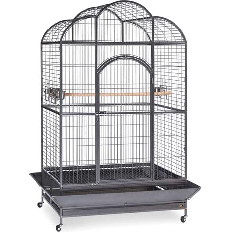 cage for sale macaw bird cages for sale bird cages