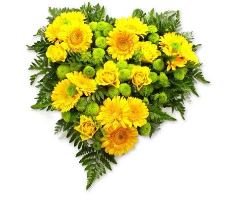 zeno fiori il fioraio centro a verona le emozioni pi 249