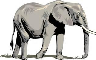 Home Design Inspiration 2015 elephant clipart clipartion com