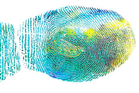 free illustration fingerprint expression free image on