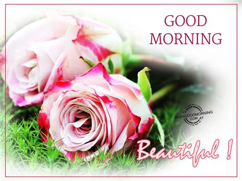 good morning images con good morning wishes for wife good morning pictures