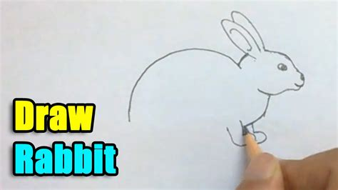 how to a rabbit how to draw a rabbit www pixshark images galleries with a bite