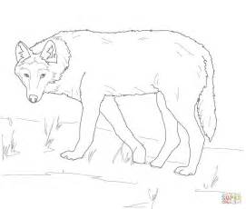 Gray Wolf Coloring Page gray wolf on alert coloring page free printable coloring