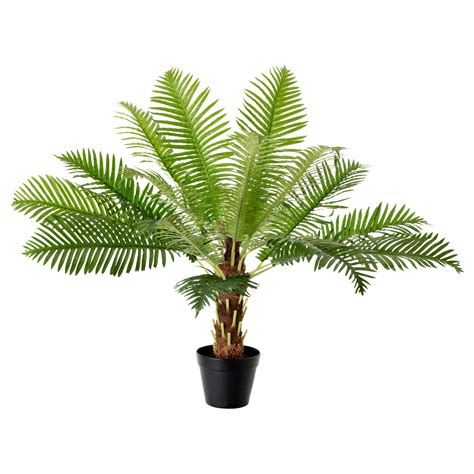artificial bathroom plants fejka artificial potted plant fern palm 17 cm ikea