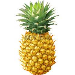 pineapple color fruity and pineapple coloring pages