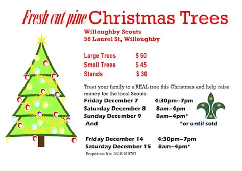 fresh cut christmas trees 2012 1st willoughby scouts