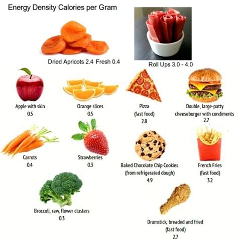 protein dense foods fruit leather fruit strips and roll ups are energy dense