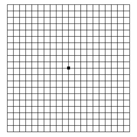 Home Design Graph Paper by Amsler Grid The Eyesite