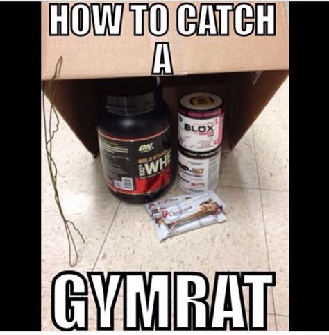 creatine h pylori protein shake meme