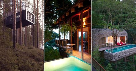 best treehouses best tree house hotels in the world have been revealed